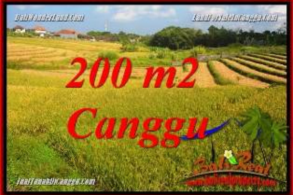 FOR SALE Beautiful PROPERTY 200 m2 LAND IN CANGGU BALI TJCG228