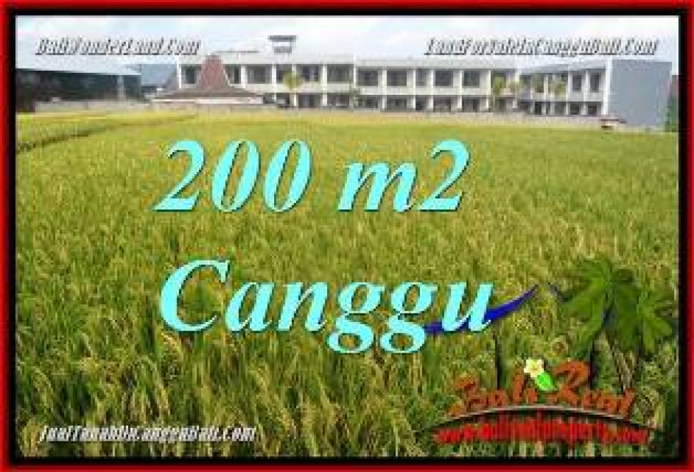 Beautiful PROPERTY CANGGU BALI LAND FOR SALE TJCG229