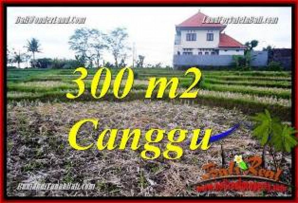 Exotic PROPERTY LAND FOR SALE IN CANGGU TJCG230