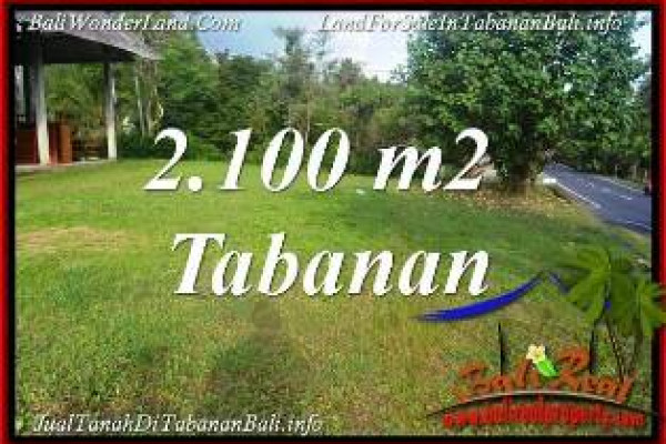 Exotic 2,100 m2 LAND SALE IN TABANAN SELEMADEG BALI TJTB393