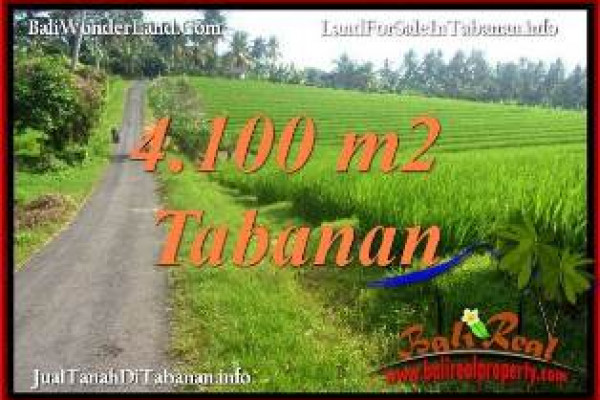 Affordable PROPERTY 4,100 m2 LAND FOR SALE IN TABANAN SELEMADEG BALI TJTB394