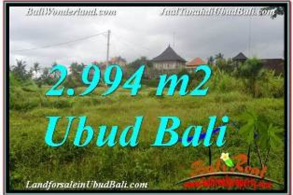 Affordable 2,994 m2 LAND FOR SALE IN SENTRAL UBUD TJUB672