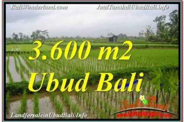 Affordable LAND IN UBUD FOR SALE TJUB673