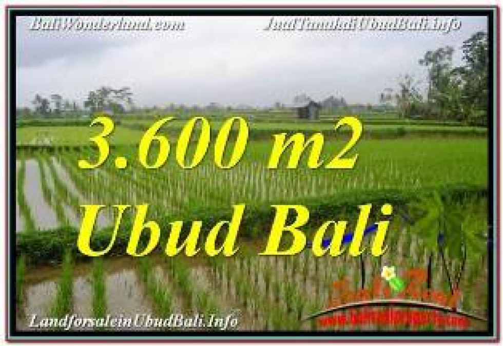 Exotic LAND SALE IN UBUD TJUB673
