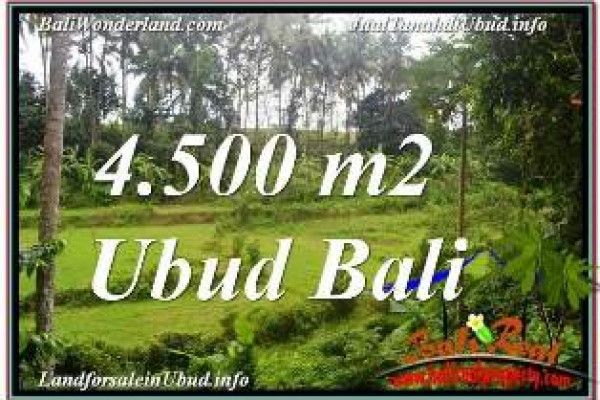 FOR SALE Magnificent LAND IN UBUD TJUB675
