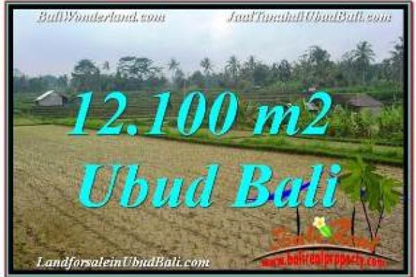 FOR SALE Beautiful PROPERTY LAND IN UBUD BALI TJUB677