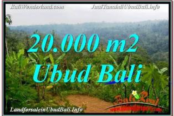 FOR SALE Magnificent PROPERTY 20,000 m2 LAND IN UBUD PAYANGAN BALI TJUB678