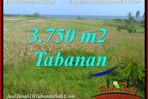 Exotic 3,750 m2 LAND IN TABANAN SELEMADEG BALI FOR SALE TJTB382