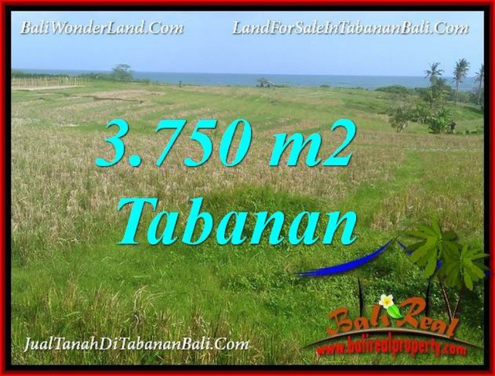 Affordable 3,750 m2 LAND IN TABANAN SELEMADEG BALI FOR SALE TJTB382