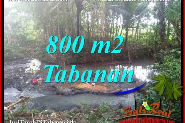 Affordable PROPERTY 800 m2 LAND SALE IN TABANAN SELEMADEG BALI TJTB384