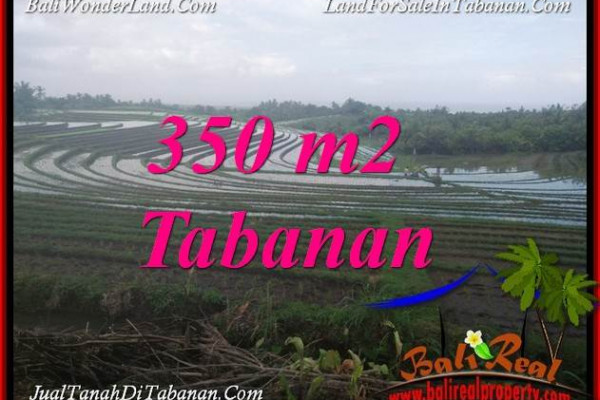 Affordable LAND FOR SALE IN TABANAN BALI TJTB386