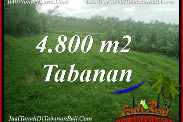 Cheap property LAND IN TABANAN SELEMADEG FOR SALE TJTB387