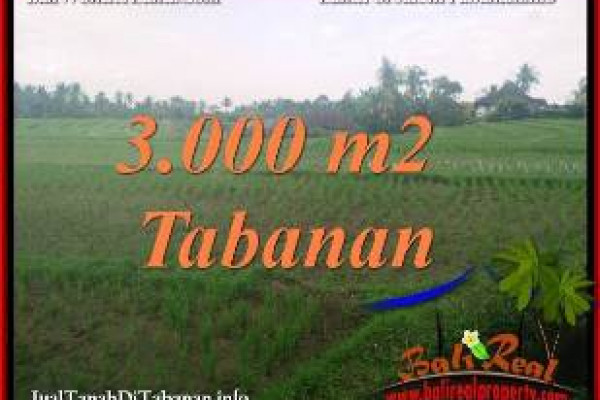 FOR SALE Beautiful LAND IN TABANAN SELEMADEG BALI