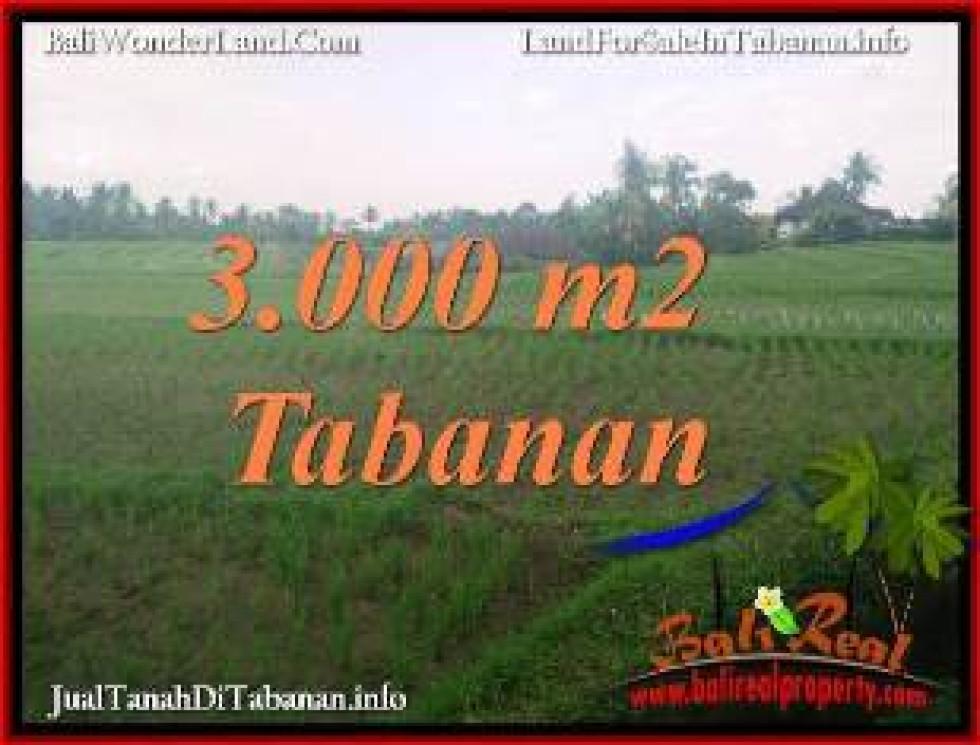 FOR SALE Beautiful LAND IN TABANAN SELEMADEG BALI