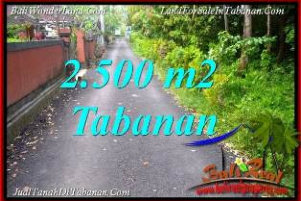 Magnificent PROPERTY TABANAN SELEMADEG BALI LAND FOR SALE TJTB391