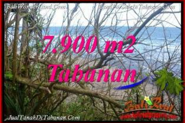 FOR SALE 7,900 m2 LAND IN TABANAN BALI TJTB392
