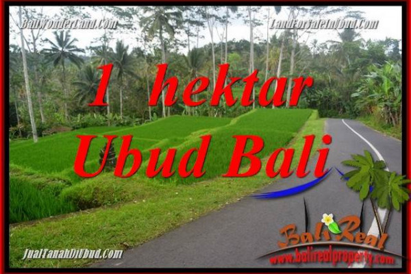 Beautiful 10,000 m2 Land in Ubud Tegalalang Bali for sale TJUB683