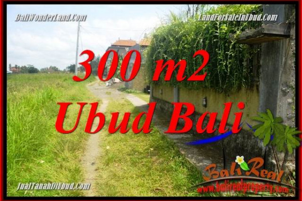 Affordable Land in Ubud Bali for sale TJUB687