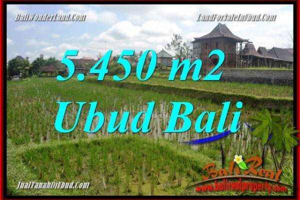 Beautiful Sentral Ubud Bali 5,450 m2 Land for sale TJUB688
