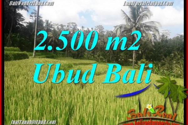 Affordable Land in Ubud Bali for sale TJUB690