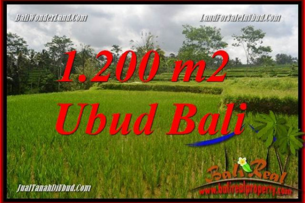 FOR sale Magnificent Land in Ubud Bali TJUB693