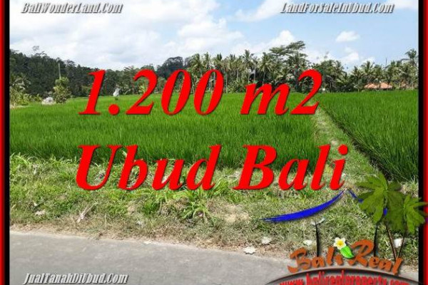 FOR sale Beautiful Land in Ubud Bali TJUB694
