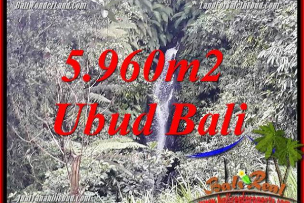 Beautiful Property Land sale in Ubud Bali TJUB696