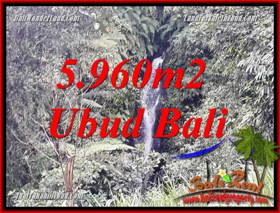Exotic Land sale in Ubud TJUB696