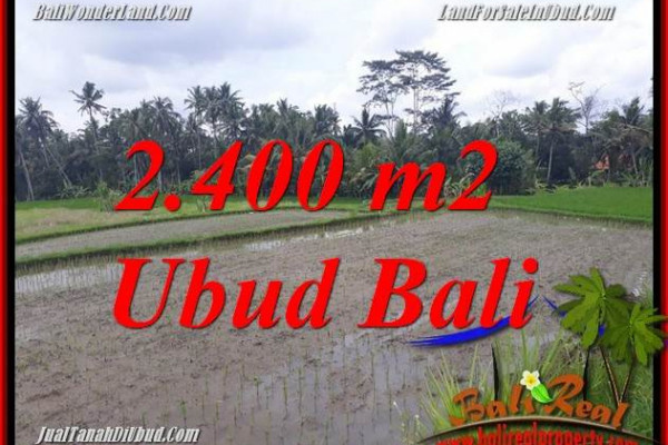FOR sale 2,400 m2 Land in Ubud Bali TJUB697