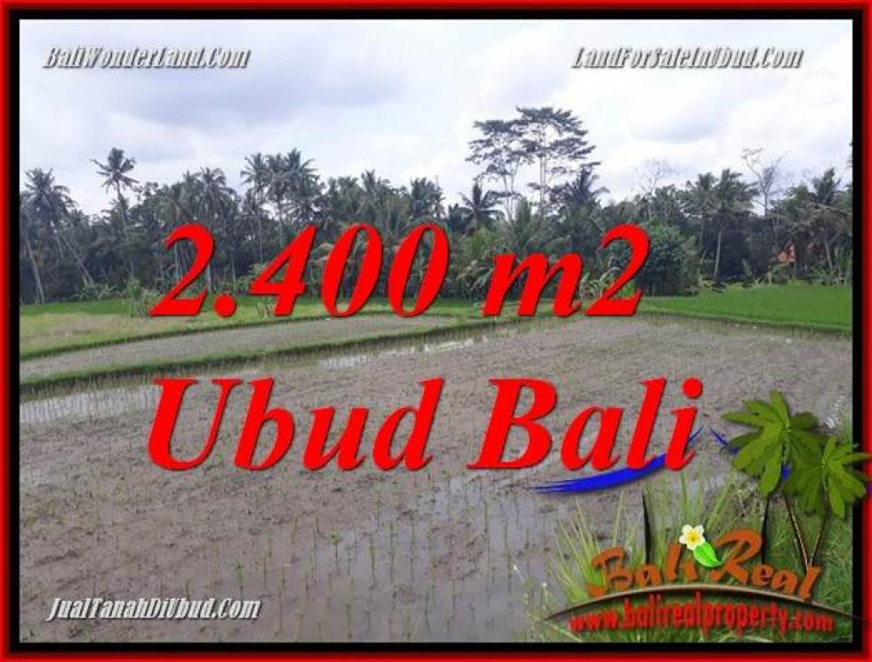 FOR sale 2,400 m2 Land in Ubud Bali TJUB697