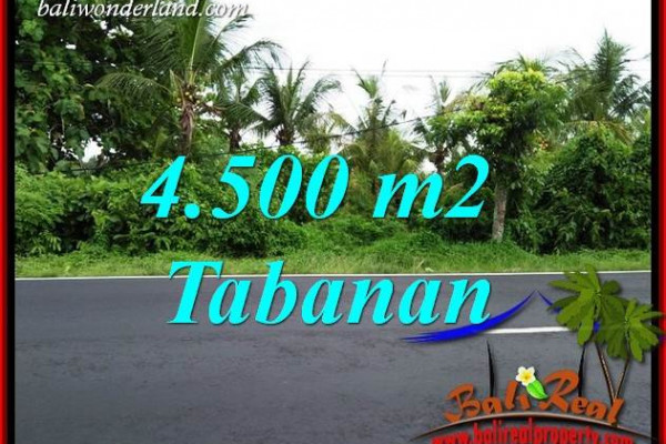 Magnificent Property 4,500 m2 Land for sale in Tabanan Selemadeg Bali TJTB395