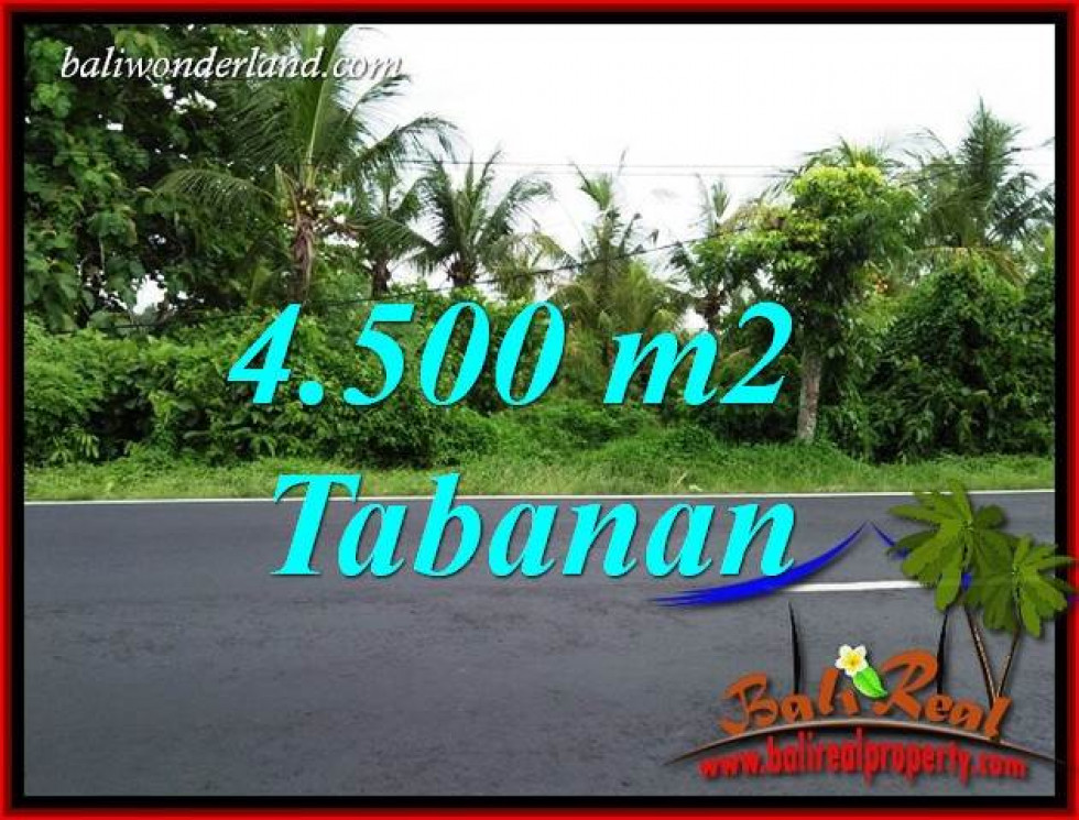 FOR sale 4,500 m2 Land in Tabanan Bali TJTB395