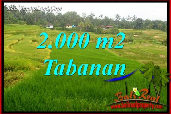 FOR sale Affordable 2,000 m2 Land in Tabanan Bali TJTB396