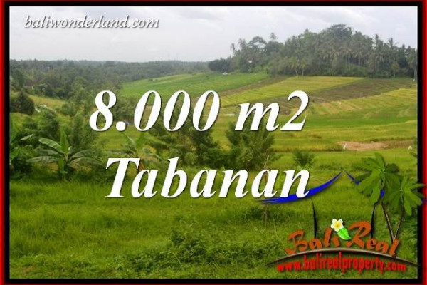 Affordable Land in Tabanan Bali for sale TJTB397