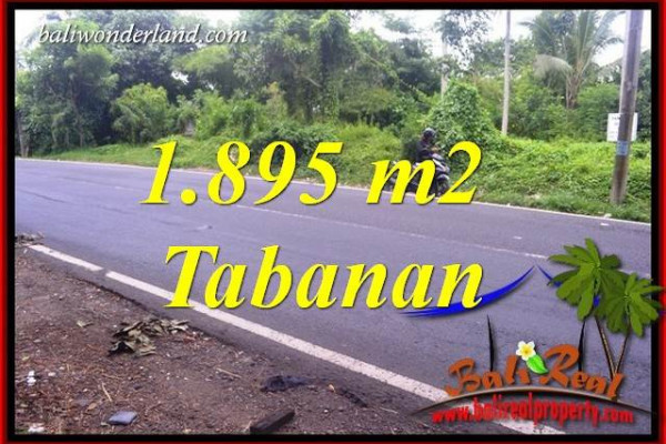 Land in Tabanan Bali for sale TJTB399