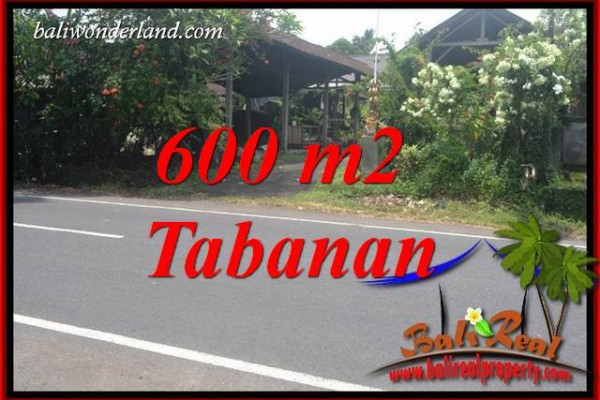 Beautiful Property Land in Tabanan Bali for sale TJTB400