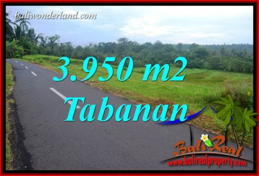 Magnificent 3,950 m2 Land sale in Tabanan Bali TJTB402