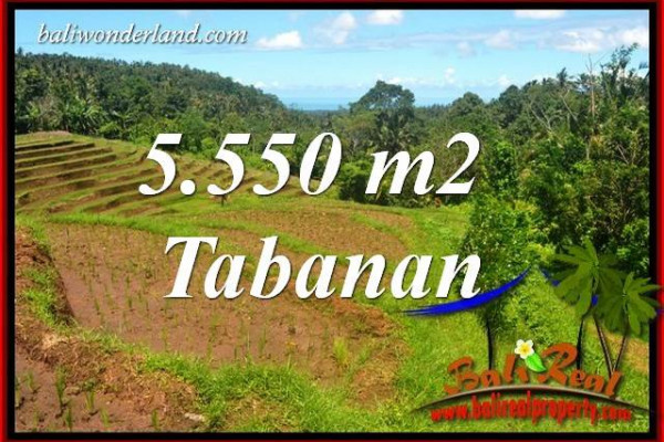 Exotic Tabanan Bali 5,550 m2 Land for sale TJTB405