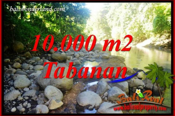 Affordable Tabanan Bali 10,000 m2 Land for sale TJTB406