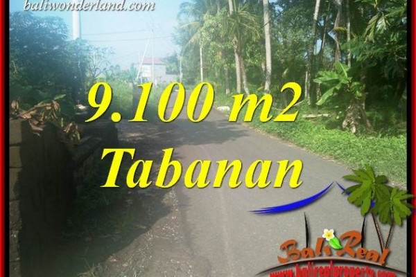 Beautiful Land in Tabanan Bali for sale TJTB407
