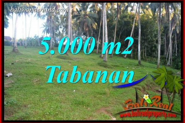 Magnificent 5,000 m2 Land sale in Tabanan Bali TJTB408
