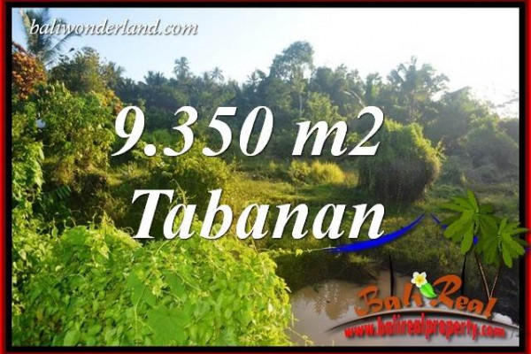 FOR sale Magnificent 9,350 m2 Land in Tabanan Bali TJTB409