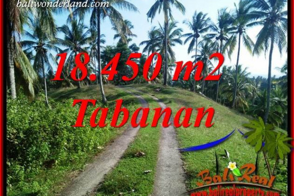 Affordable Property 18,450 m2 Land in Tabanan Selemadeg for sale TJTB410