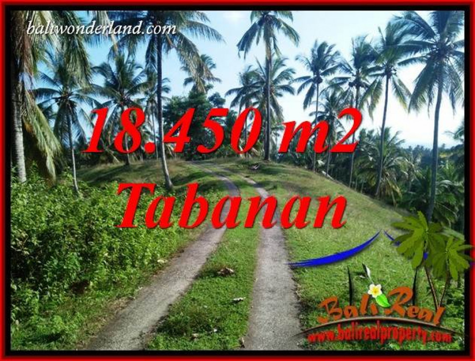 Exotic Property 18,450 m2 Land sale in Tabanan Selemadeg Bali TJTB410