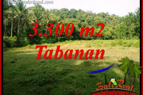 FOR sale Affordable 3,300 m2 Land in Tabanan Bali TJTB413