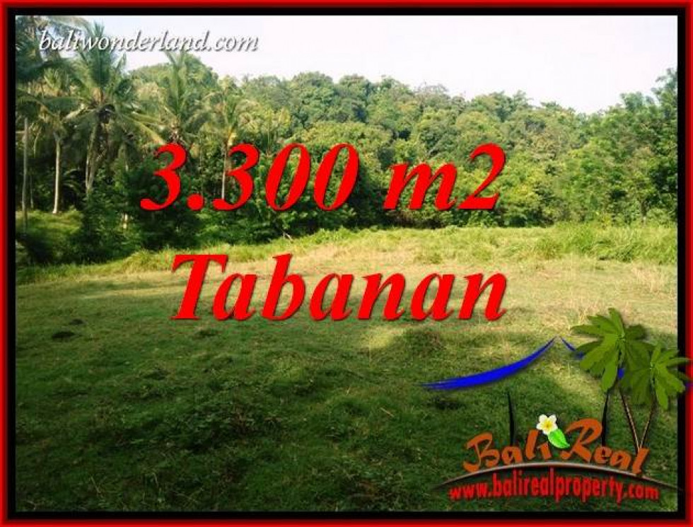 FOR sale Beautiful Property 3,300 m2 Land in Tabanan Selemadeg Bali TJTB413