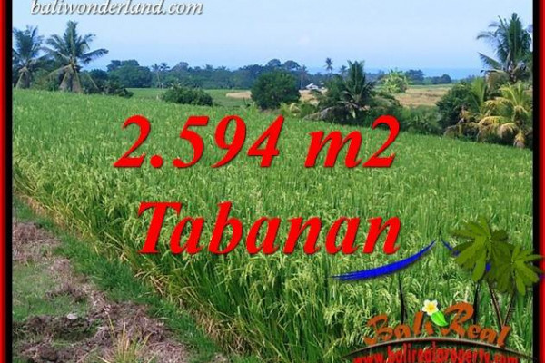 FOR sale Affordable 2,594 m2 Land in Tabanan Bali TJTB414