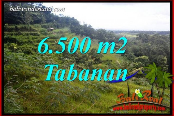 Affordable 6,500 m2 Land for sale in Tabanan Penebel Bali TJTB416