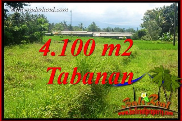 Affordable 4,100 m2 Land sale in Tabanan Bali TJTB417