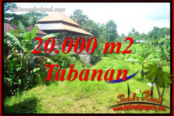 Beautiful 20,000 m2 Land in Tabanan Kota for sale TJTB418